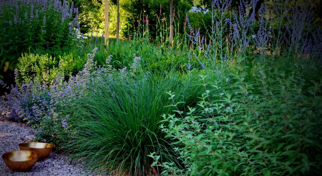 garden-design-mixed-planting