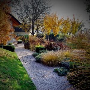 ureditev-grede-trajnice-jesen