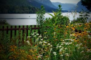 ureditev-okolice-cvetlicni-vrt