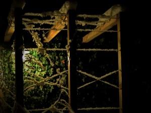 ureditev-okolice-lesena-konstrukcija