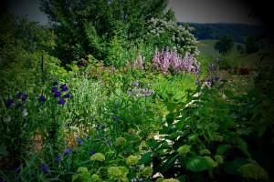 ureditev-okolice-zelenjavni-vrt