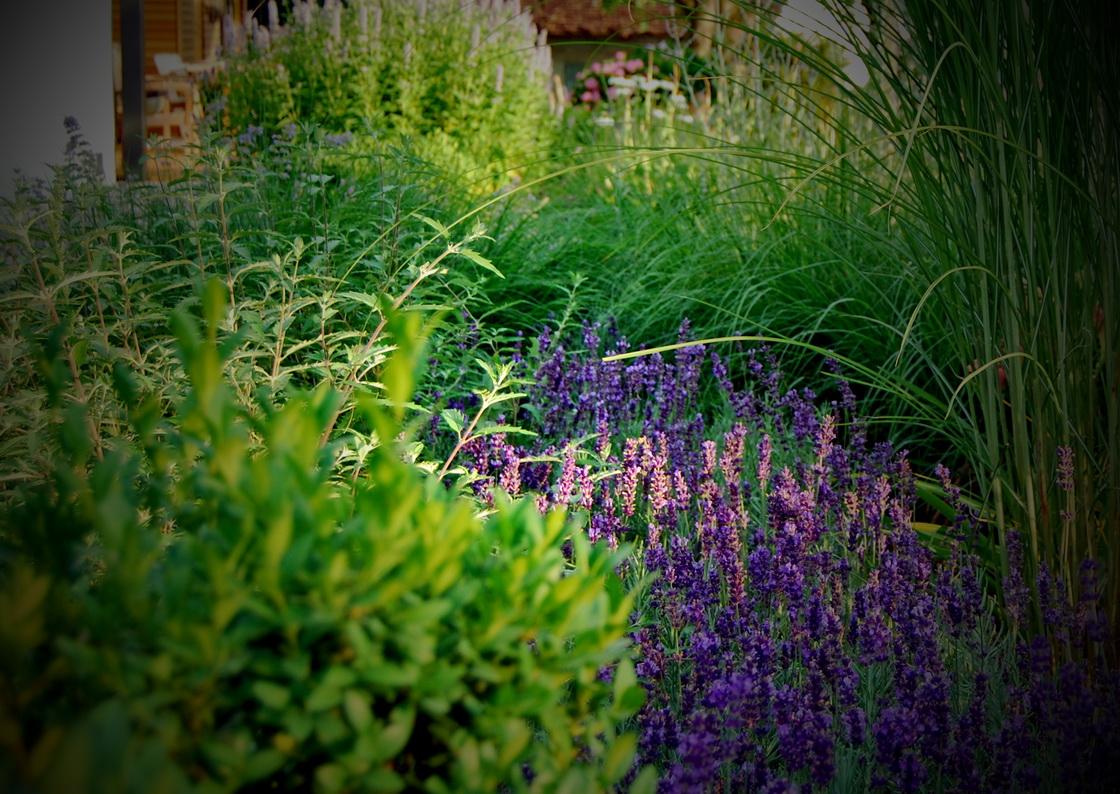 ureditev-vrta-trave-sivka