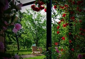 mitja-skrjanec-garden-lounger