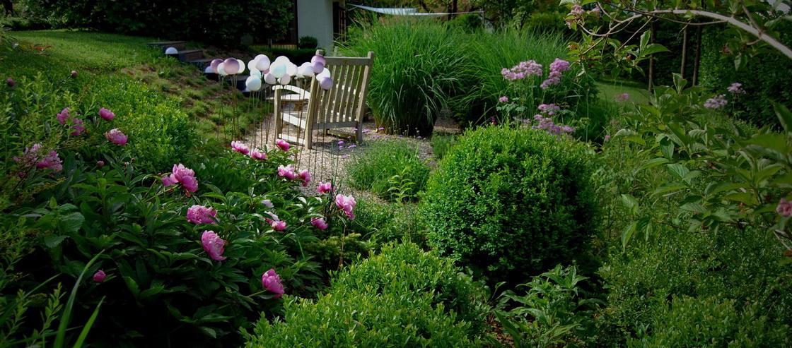 perrenial-garden-boxwood