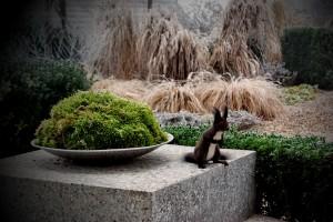 ureditev-okolice-veverica-zima