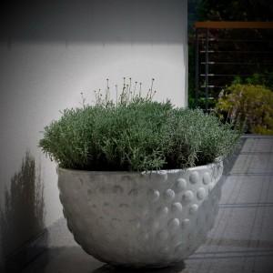 ureditev-okolice-zasaditev-balkona