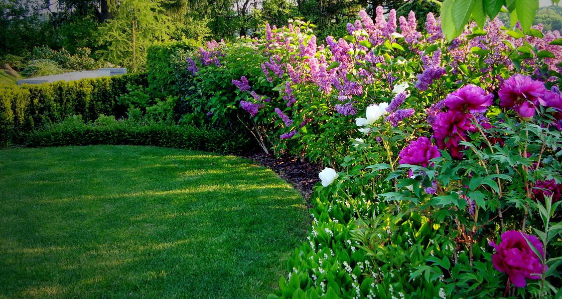 garden-mixed-border