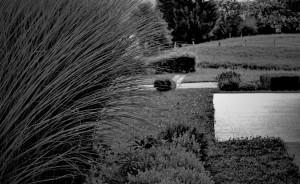 urejanje-okrasnih-vrtov