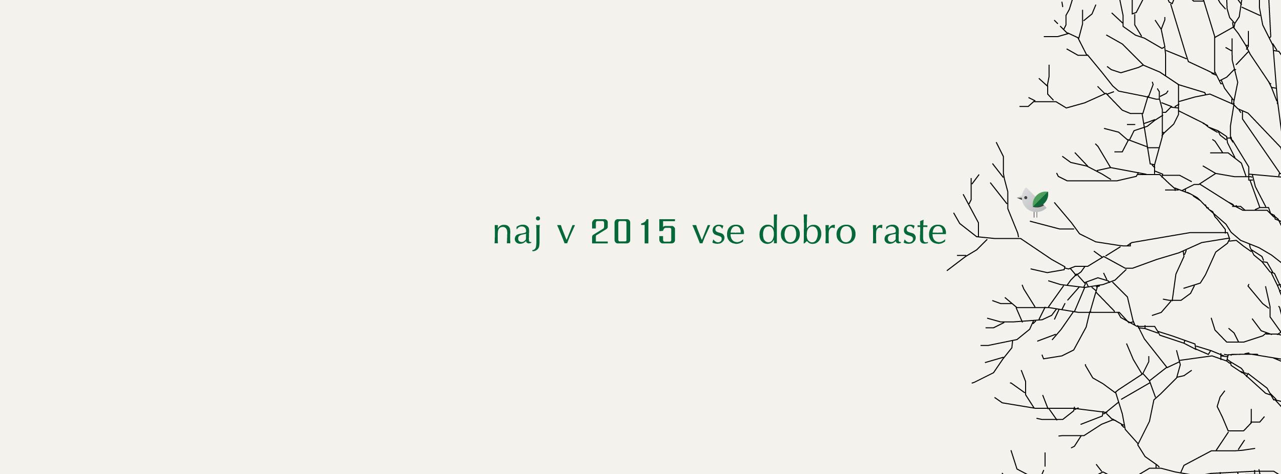 mitja-skrjanec-bozic-2015