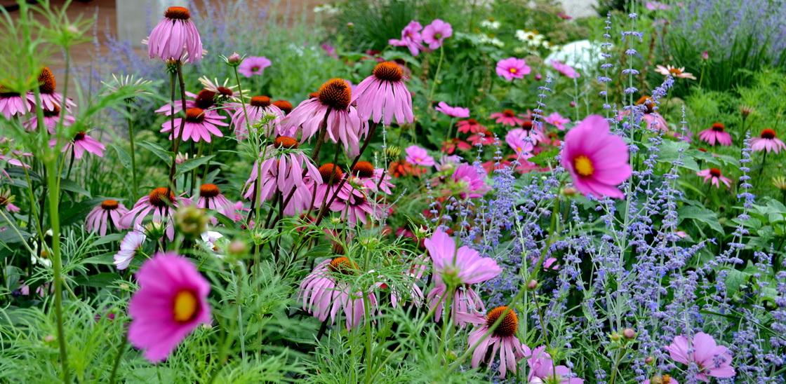 ekoloska-zasaditev-vrtov