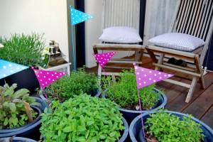 vrt-na-terasi