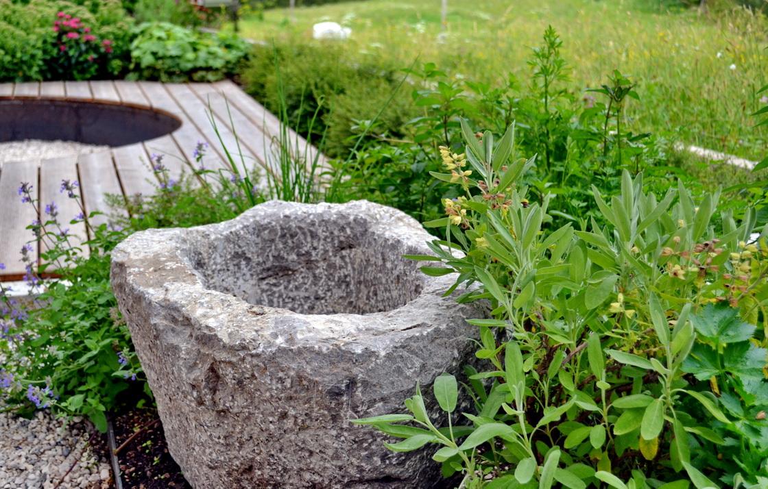 zelenjavni-vrt-eko